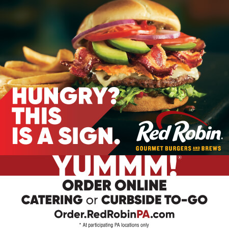 Red Robin Image